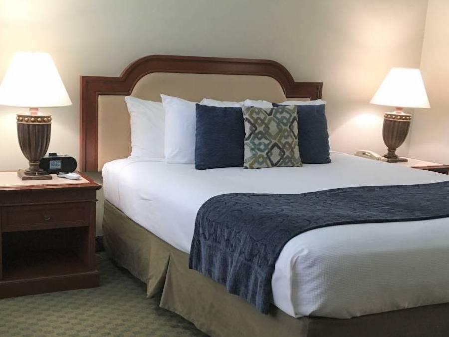 La Avenida Inn Queen Room